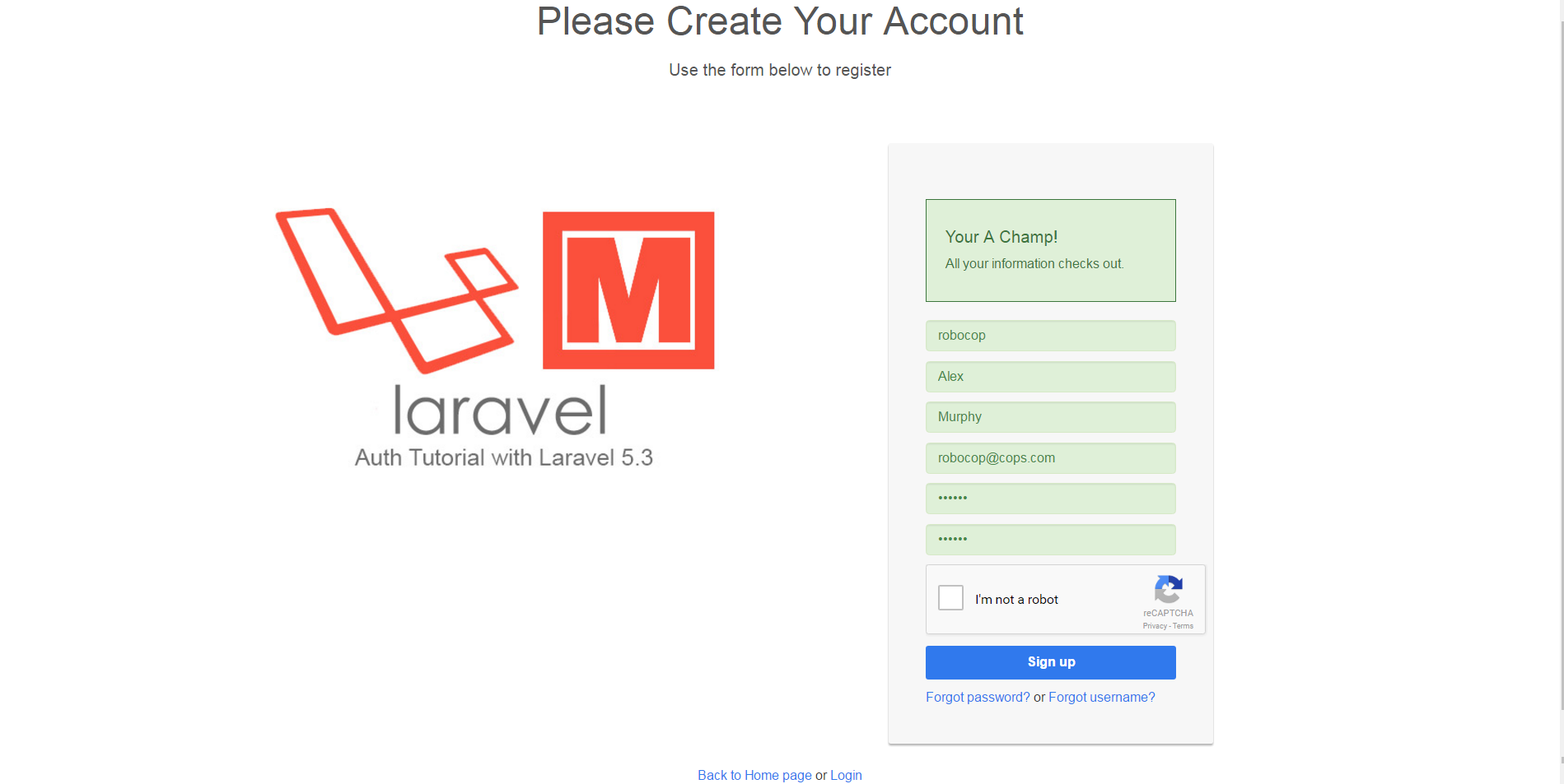 laravel-5_3-throttle-recaptcha-app-06-parsley-register-pass